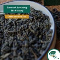Somnuek Laothang Tea Factory BioTrade